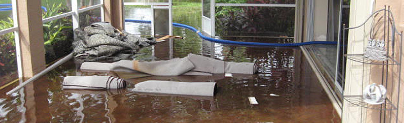 flood_insurance_miami_law1