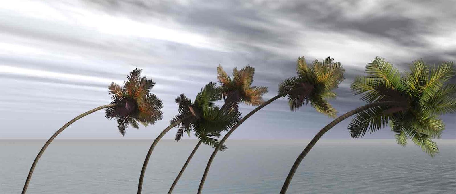 hurricane_2-1